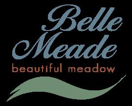 Belle Meade Texas Township